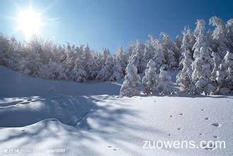 关于冬天的作文