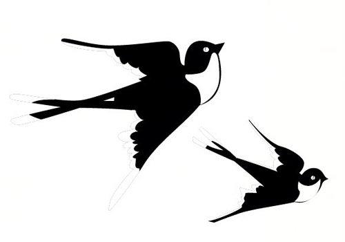 关于小燕子的作文