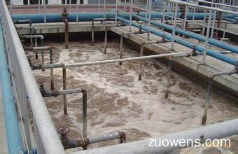 关于污水处理的作文