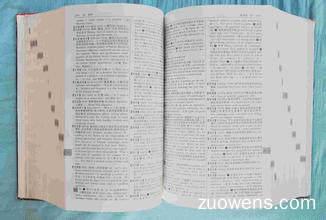 关于词典的作文