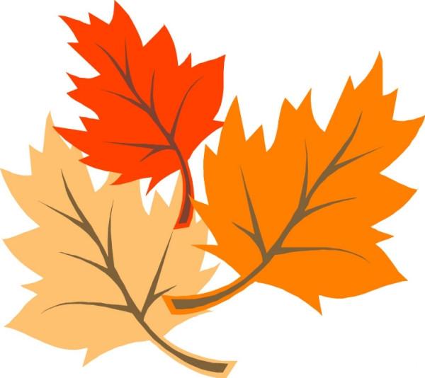 秋天的树叶作文350字