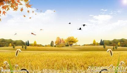 秋天是丰收的季节作文200字